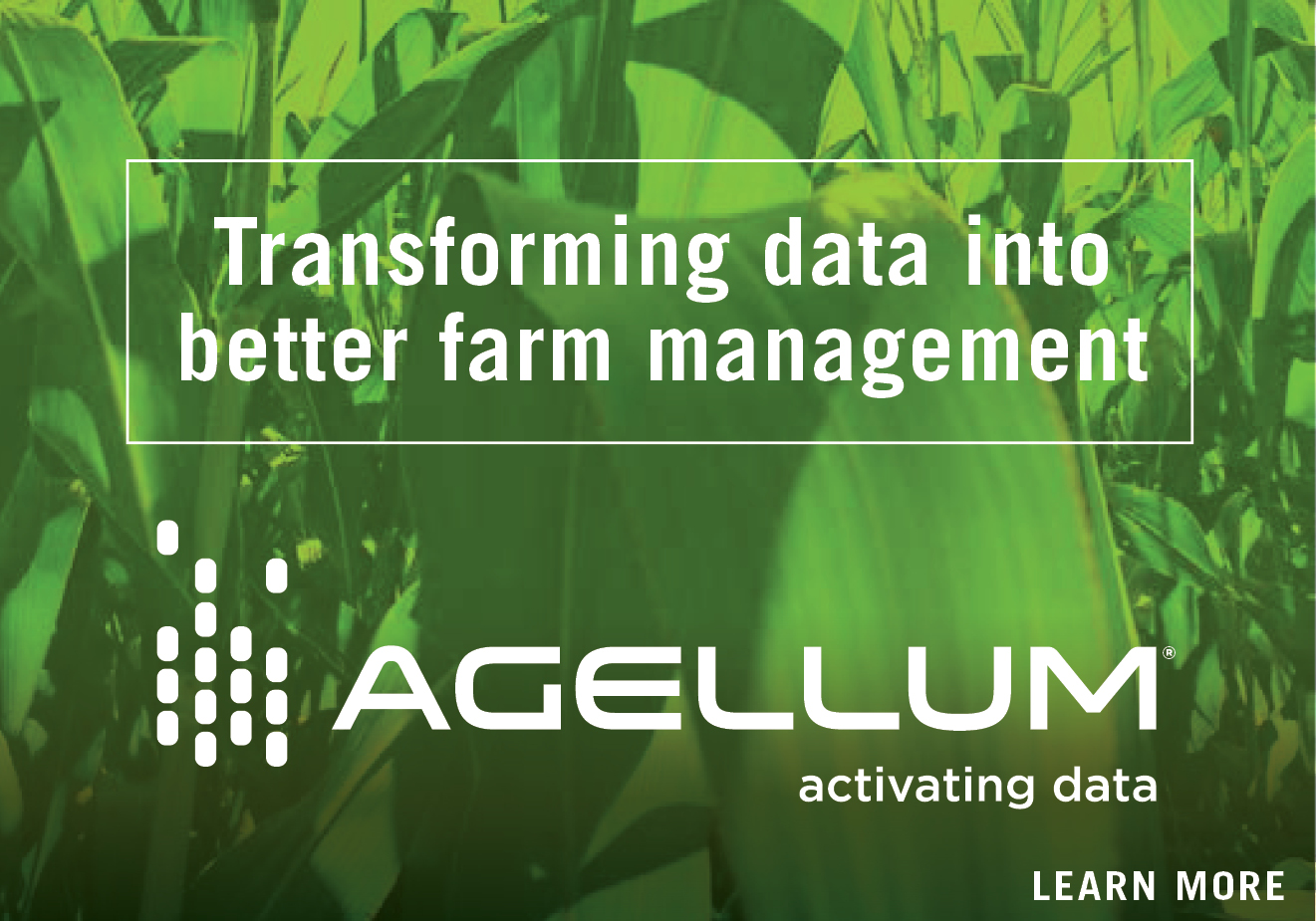 Agellum, Activating Data